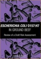 Escherichia Coli O157:H7 in Ground Beef - Review of a Risk Assessment